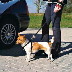 Biztonsagi-ov-Kutyanak-50-70cm-M-TRX1291