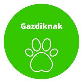 GAZDIKNAK